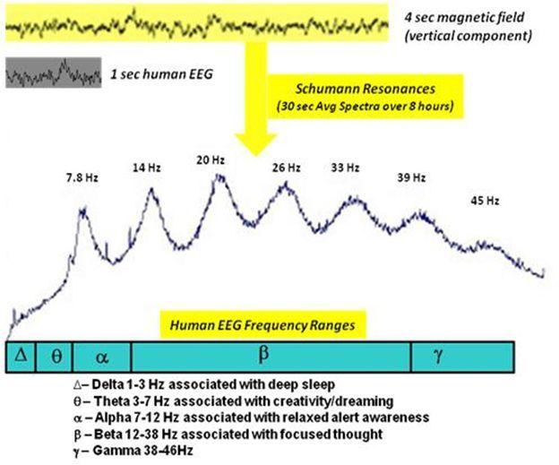 hvordan man kan bevise kulstofdatering