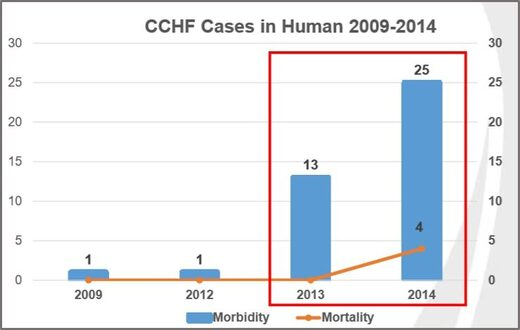 CCHF Cases in Humans