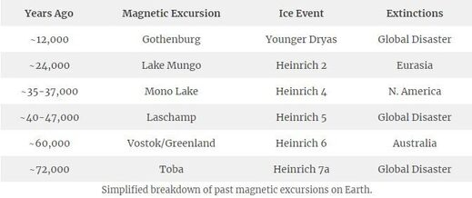 Past magnetic excursions